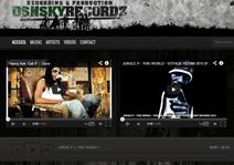 dsnsky.com