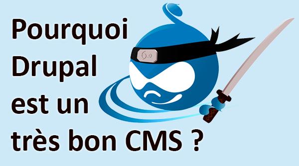 Pourquoi Drupal est un très bon CMS ?